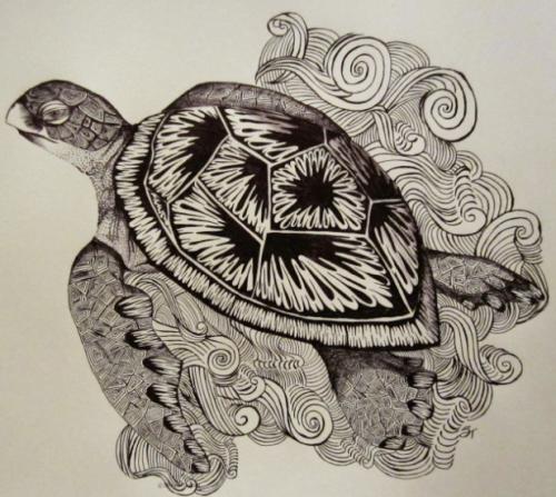 henna turtle 2014-03-03_1618